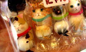 販売|かわいい猫のお菓子始めました
