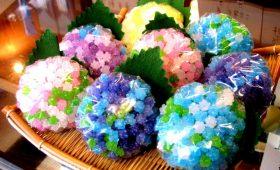 販売|金平糖のあじさい、咲きそろいました