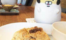 ヤンキーハムスターと行く江古田散歩 Vol.2|cafe earth